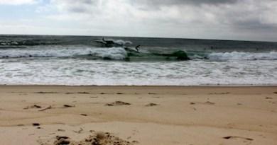 Hampton Bays surfers