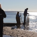 Seining Friday morning at Veterans Beach