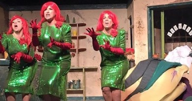 """Chiffon, Crystal and Ronnette sing up a storm in NFCT's current production of """"Little Shop of Horrors"""""""