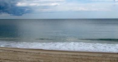 Bundled ocean.