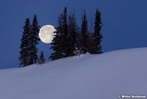 Full Wolf Moon Hike for Families with Children with GFEE at