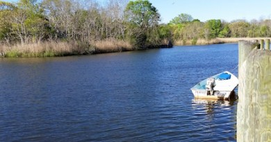 Perfect Pitch in the Peconic River