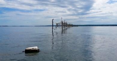 The pound traps of Robins Island.