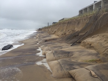 Exposed geotextile bags after Hermine | East Hampton Town courtesy photo