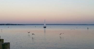 Wednesday in Cutchogue Harbor