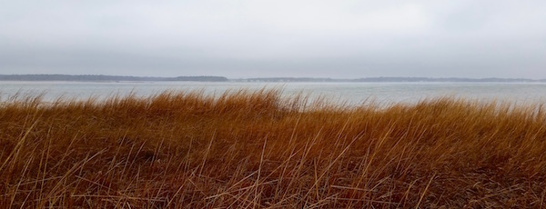 December fog, Flanders Bay