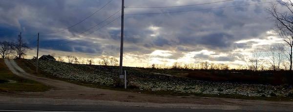 Rain clouds, winter cabbage.