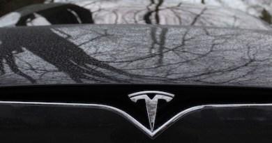 Tesla Tree Reflections.