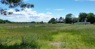 The Suffolk County Legislature has agreed to get appraisals on the former Helen's Country Plant Farm on the Main Road in Jamesport.
