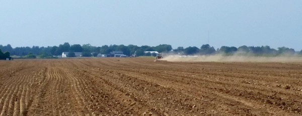 Dust farming, Tuesday in the heat.