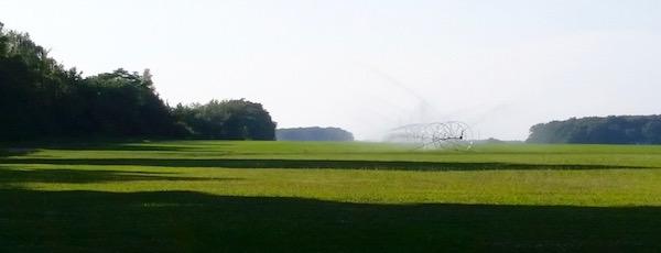 Irrigation season.