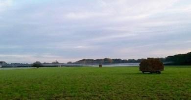Cutchogue, farm field, morning, fog