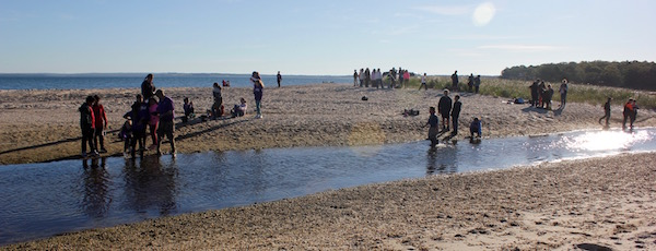 A Day in the Life of the Peconic Estuary: Friday morning at the inlet of Squires Pond in Hampton Bays.
