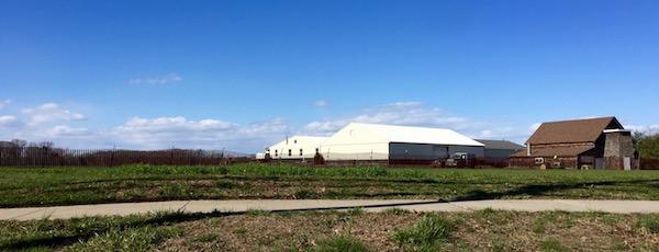 Thursday Farmscape, Aquebogue