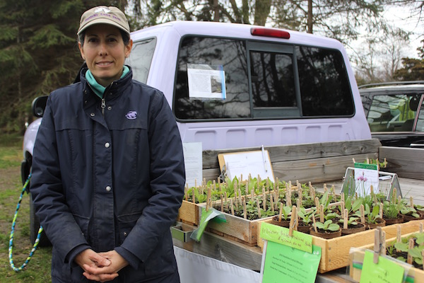 Nicole Orens-Williams of Herrick's Herbs & Heirlooms organic nursery in Jamesport