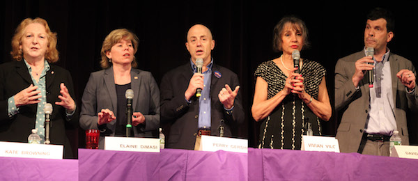 Kate Browning, Elaine DeMasi, Perry Gershon, Vivian Viloria-Fisher and David Pechefsky are running for Congress.