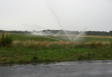 Irrigation of sod in the rain is just one of the more visible signs of Southold's unsustainable water use.