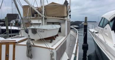 Ingy, Sag Harbor Tuesday
