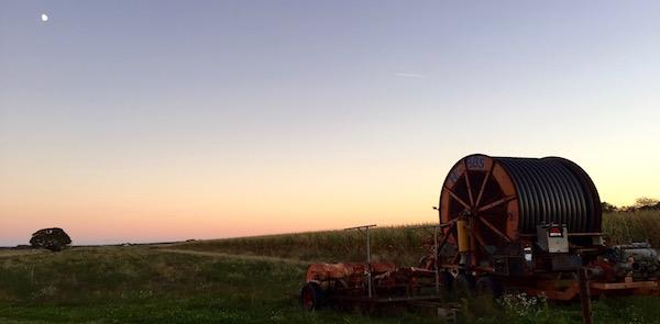 Riverhead sunset