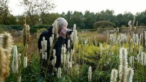 "Film & Talk: ""Five Seasons: The Gardens of Piet Oudolf"" at Parrish Art Museum"
