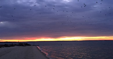 New Suffolk Sunrise over Peconic Bay