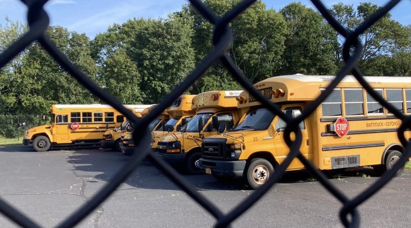 school buses for web