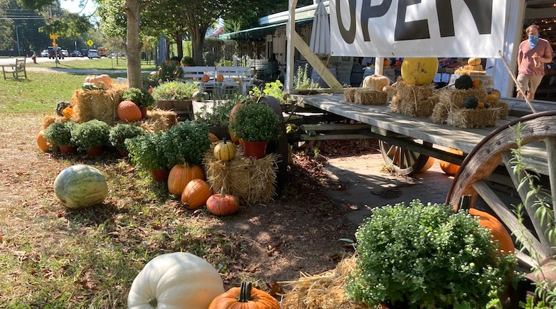 Open at the Amagansett Farmers Market