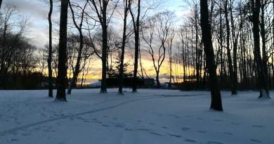 A snowy visit to Downs Farm Preserve, Cutchogue