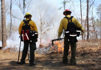 DEC firefighters at the April 20 controlled burn. | Courtesy DEC