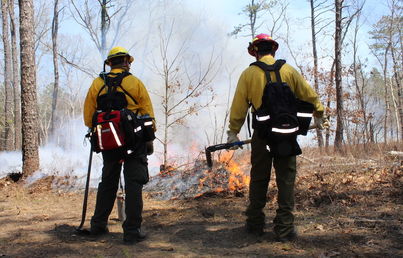 DEC firefighters at the April 20 controlled burn.   Courtesy DEC