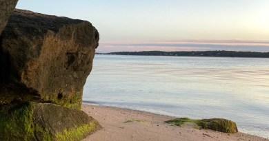 low tide beach rocks