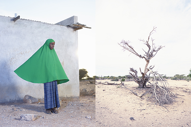 Photograph by Felicity McCabe of 11-year-old Ilhan Abdillahi Geel near Gargarra, Somaliland
