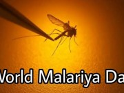 World Malaria Day 2020: Zero malaria starts with me!