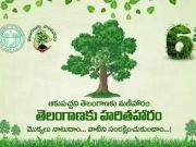 How Telangana is increasing its forest cover through two noble initiatives