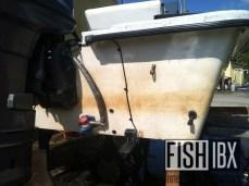 Before FishIBX Detail