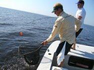 fish ibx charter fishing 2