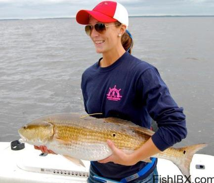 red drum 2