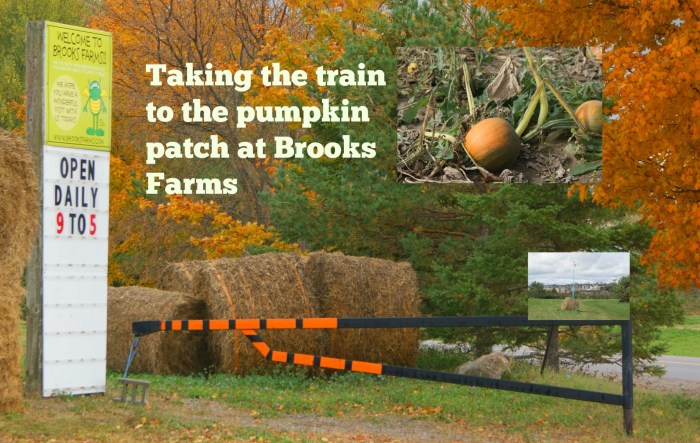 Brooks Farms train