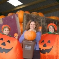 Halloween Events for Half Term