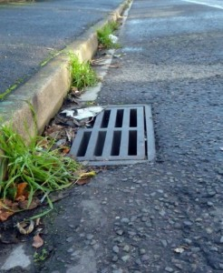 Unswept gutter Eastleigh