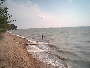 Netley Shoreline