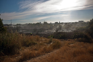 After the Fire on Peartree Common. Photo: Hampshire Fire & Rescue