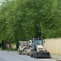 Thirty trees to get chop for car showroom