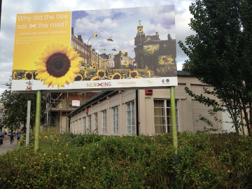 1000 sunflowers for New Cross by Scott Temple