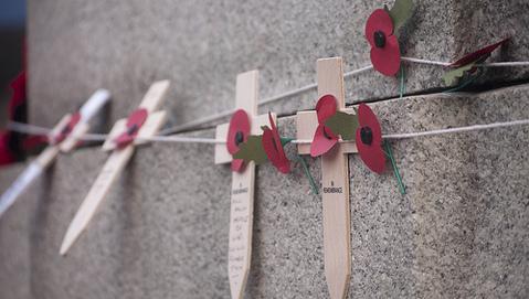 Honouring the fallen servicemen and women. Pic: Lauren Cathy Turner