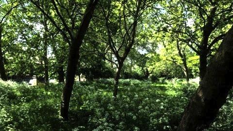 Mabley Green meadows. Pic: Damien Rafferty.