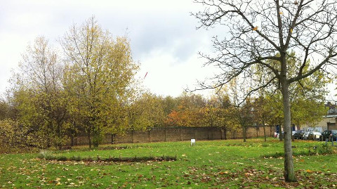 Crossfields green spaces at risk. Pic: Pippa Bailey