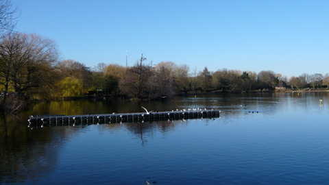 South Norwood Lakes