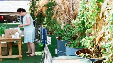 Planting at Urban Garden Dalston Pic: Jimena Marseillan