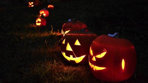 Halloween POL Marketa Vesela